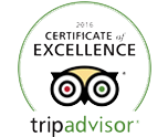 Certificate of Excellence 2016 Image